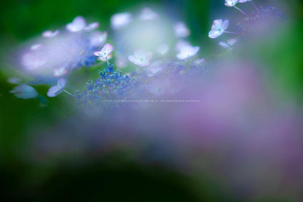 hotphoto_210620_29.jpg